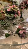 25 anos de casamento Niedja e Prisco Bezerra