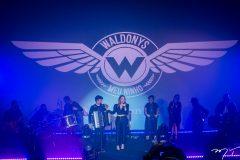 Show de aniversário de Waldonys