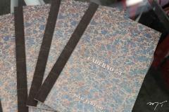 Lançamento Do Livro Caderno 53 De Isaac Furtado