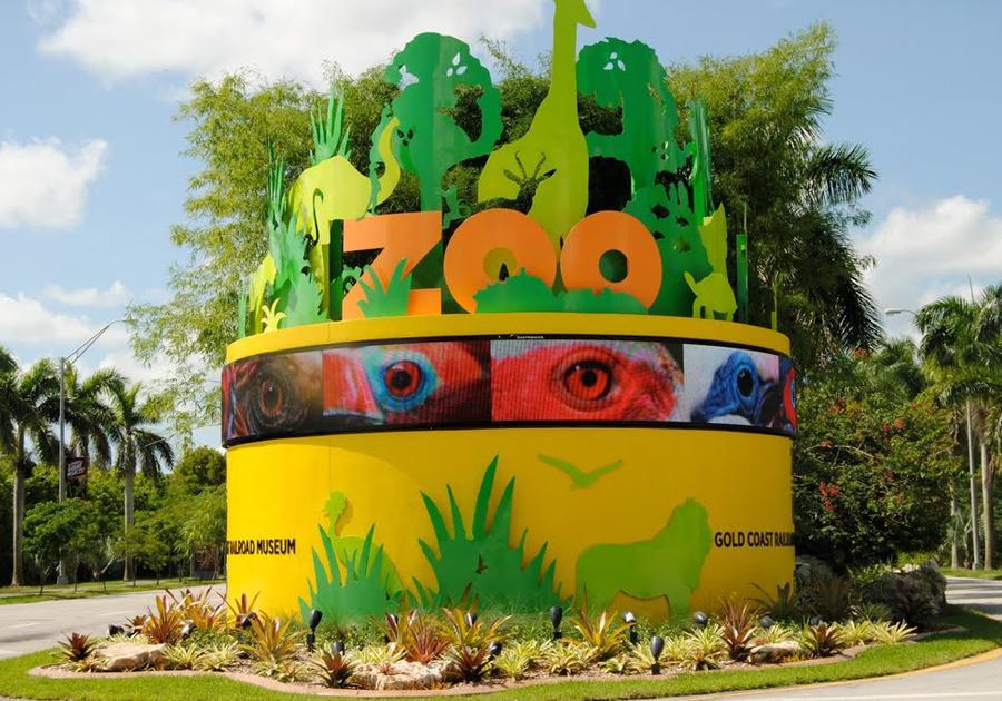 Que tal um tour pelo maior zoológico da Flórida? Glice Parente tem a dica