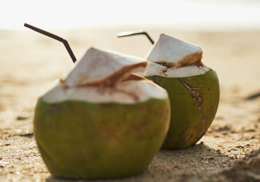 Ceará é líder nacional em exportação de água de coco; saiba mais