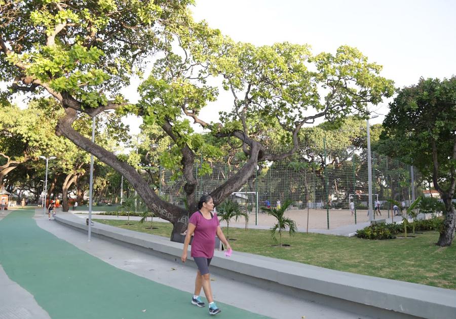 Prefeitura anuncia ampliação do Parque Rachel de Queiroz
