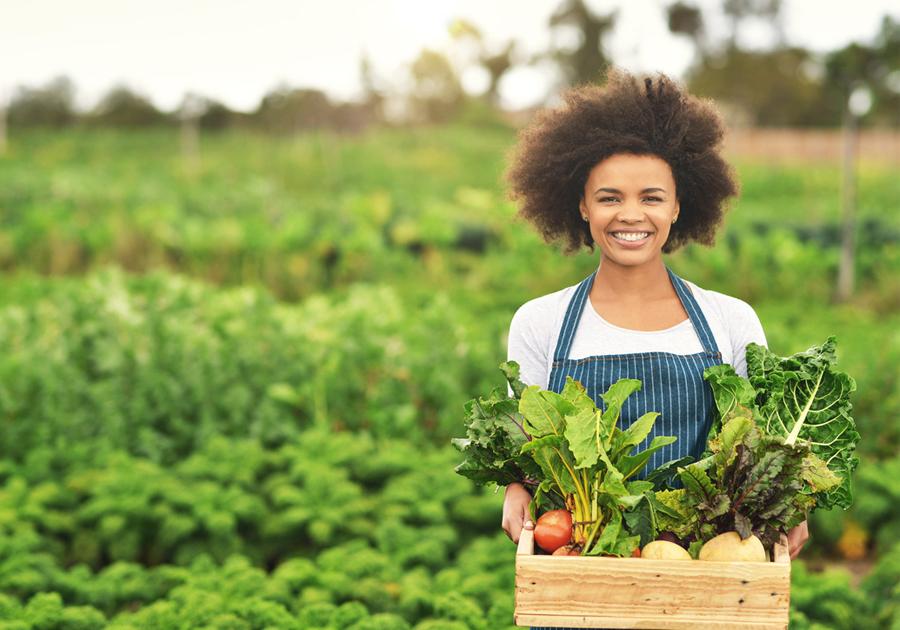 Sesc comemora Dia Mundial da Alimentação com ações de sustentabilidade alimentar