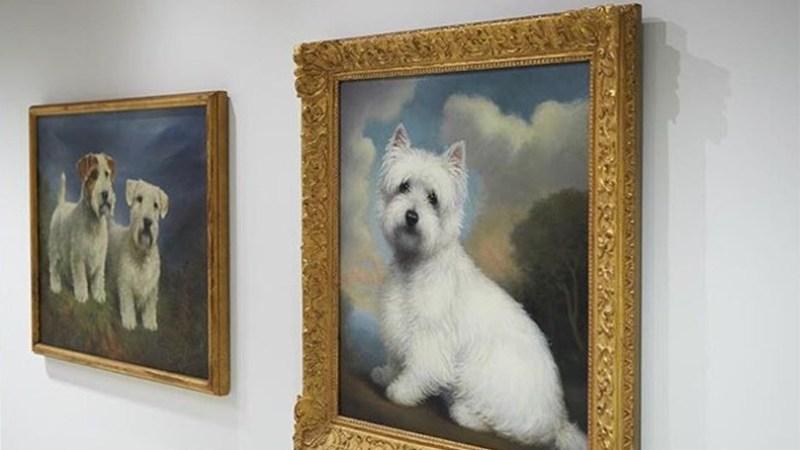 Museu dedicado a cachorros reabre em fevereiro em Nova York