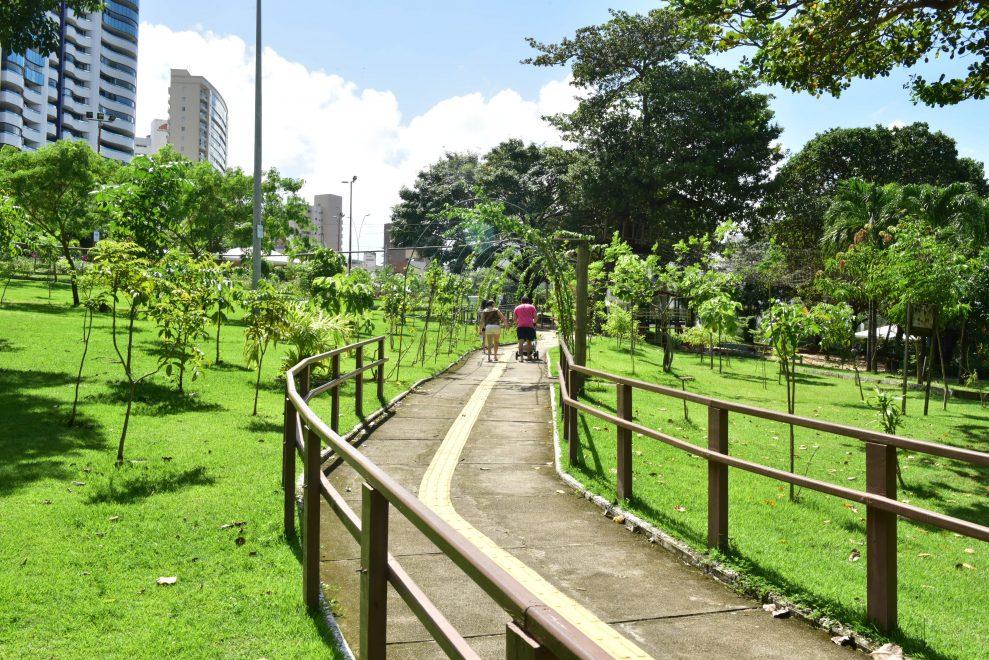 C. Rolim Engenharia comemora plantio de 21 mil mudas no Parque do Cocó