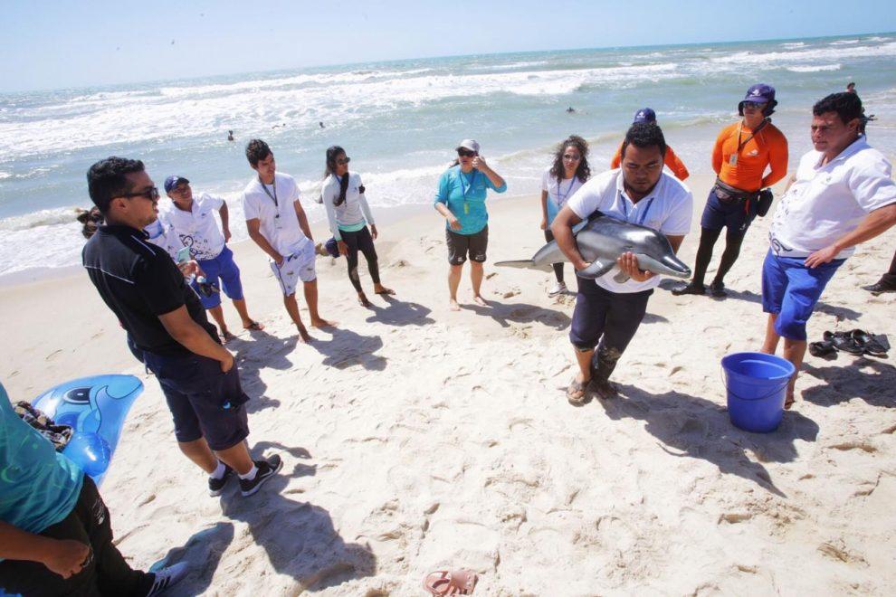 Beach Park promove ação educativa para moradores do Porto das Dunas