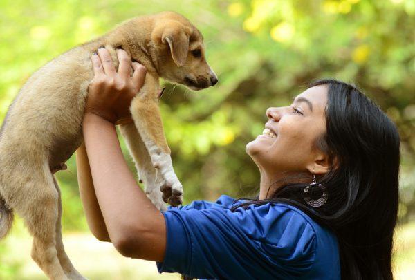 Cães e gatos poderão encontrar lares em feira de adoção no Parque do Coco; veja como participar