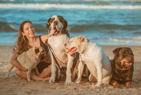 Pets ajudam a equilibrar a saúde mental no isolamento