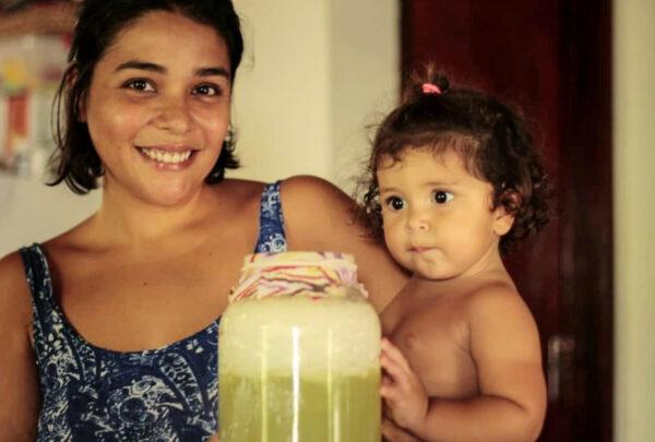 Kombucha, kefir e chai: conheça as três bebidas e aprenda sobre outras culturas